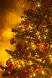 Christmas Tree1 Kris69