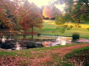 Champagne Sports Resort - the beauty of autumn!